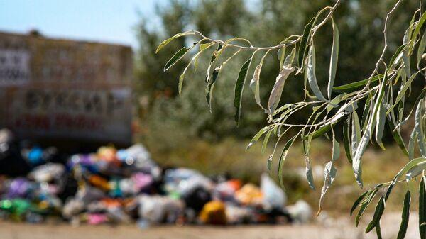 Туризм свалка мусор экология