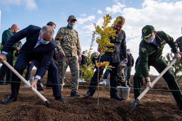 Всего в рамках акции Сохраним лес вместе в Крыму высадят 55 тыс сеянцев.