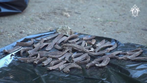 В Севастополе обнаружили массовое захоронение времен ВОВ
