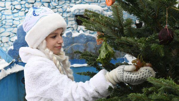 Новогодние мероприятия в парке флоры и фауны Роев ручей