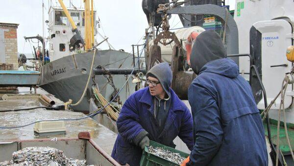 Рыбаки выгружают ящики с хамсой, которая пойдет на крымские рынки