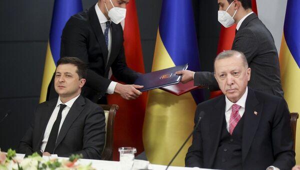 Встреча президента Украины Владимира Зеленского и президента Турции  Реджепа Таийпа Эрдогана в Стамбуле