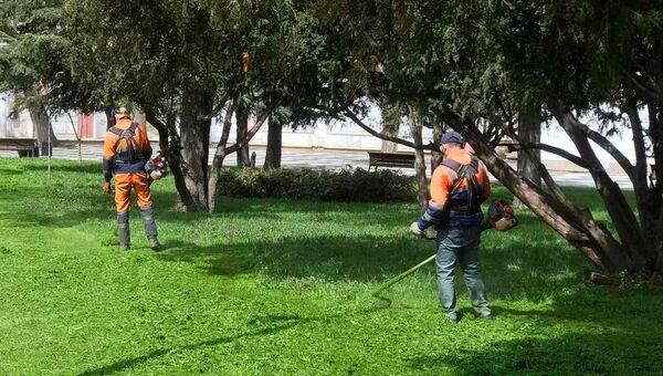 Коммунальщики выкосили 50 тысяч квадратов травы в Симферополе