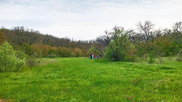 Мекензиевы горы, туристы на поляне
