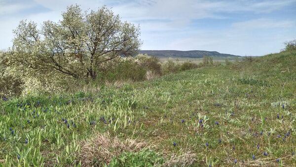 Окрестности села Фронтовое