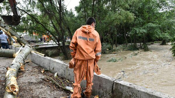 Сотрудник МЧС России во время уборки мусора и поваленных деревьев после сильных дождей и селей в Бахчисарайском районе