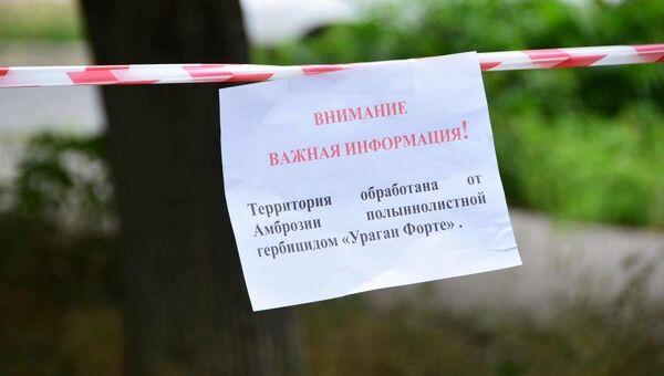Борьба с амброзией в Симферополе