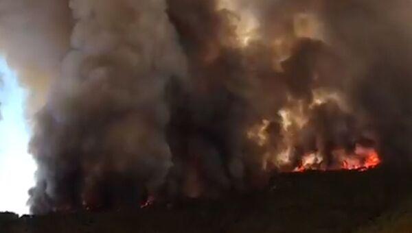 Крупный лесной пожар на турецком курорте Мармарис  (копия)