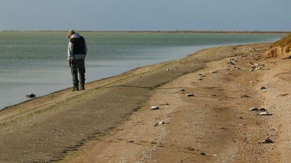 Массовая гибель птиц в Крыму