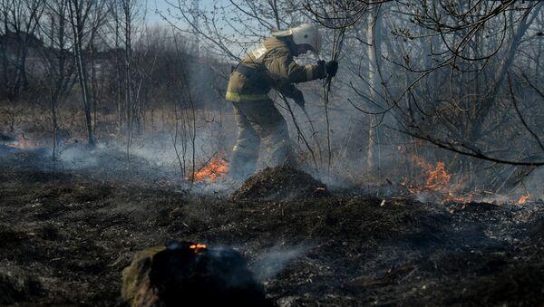 Пожаротушение в лесу