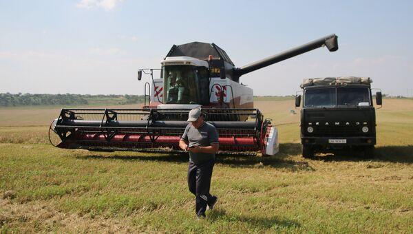 Уборка зерновых на Юге России