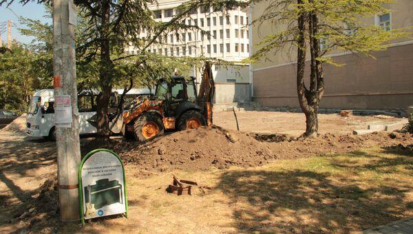 В Симферополе хотят спилить несколько деревьев около здания администрации