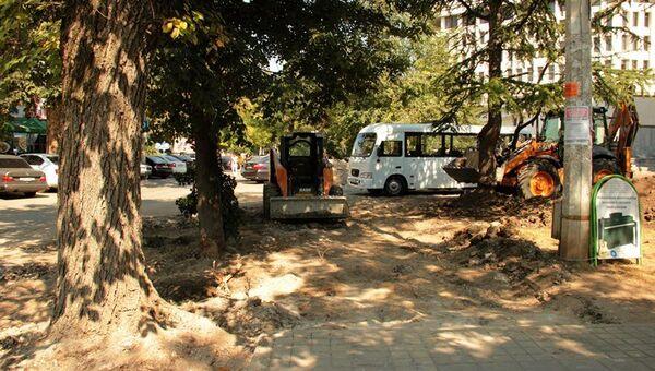 Власти Симферополя приняли решение спилить несколько деревьев около здания администрации города, мотивируя это тем, что в этом месте необходимо расширить проезжую часть и создать парковку.