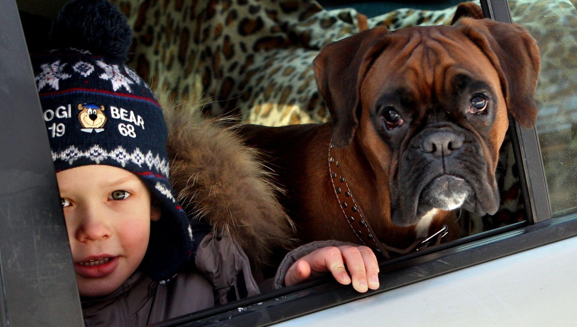 Ребенок в машине - РИА Новости, 1920, 01.05.2021