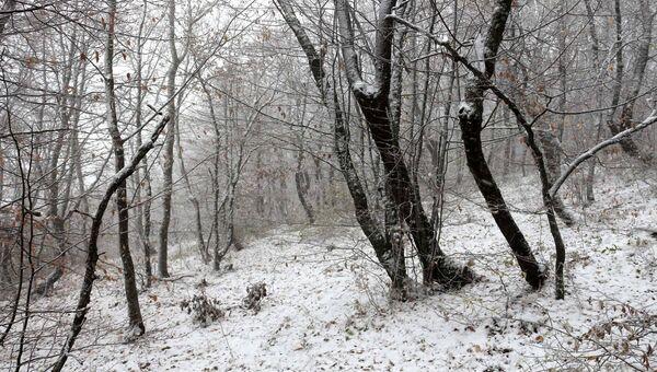 На Чатыр-Даге выпал первый снег