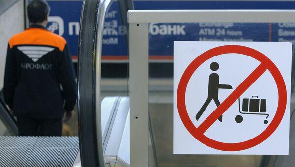 В аэропортах Москвы повышены меры безопасности