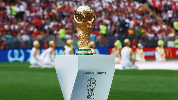 Кубок на поле перед началом финального матча чемпионата мира по футболу между сборными Хорватии и Франции