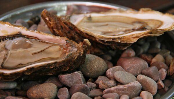 Черноморские устрицы
