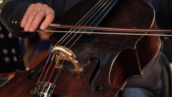 Музыкант оркестра. Архивное фото