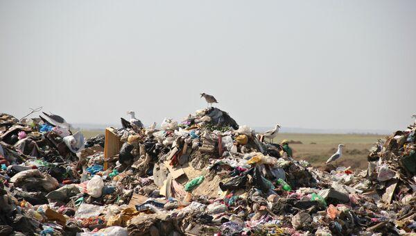 Полигон твердых бытовых отходов в селе Тургенево Белогорского района