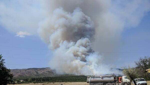 Лесной пожар в районе горы Агармыш, Старый Крым