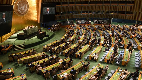 Сессия Генеральной Ассамблеи Организации Объединенных Наций в Нью-Йорке. Архивное фото
