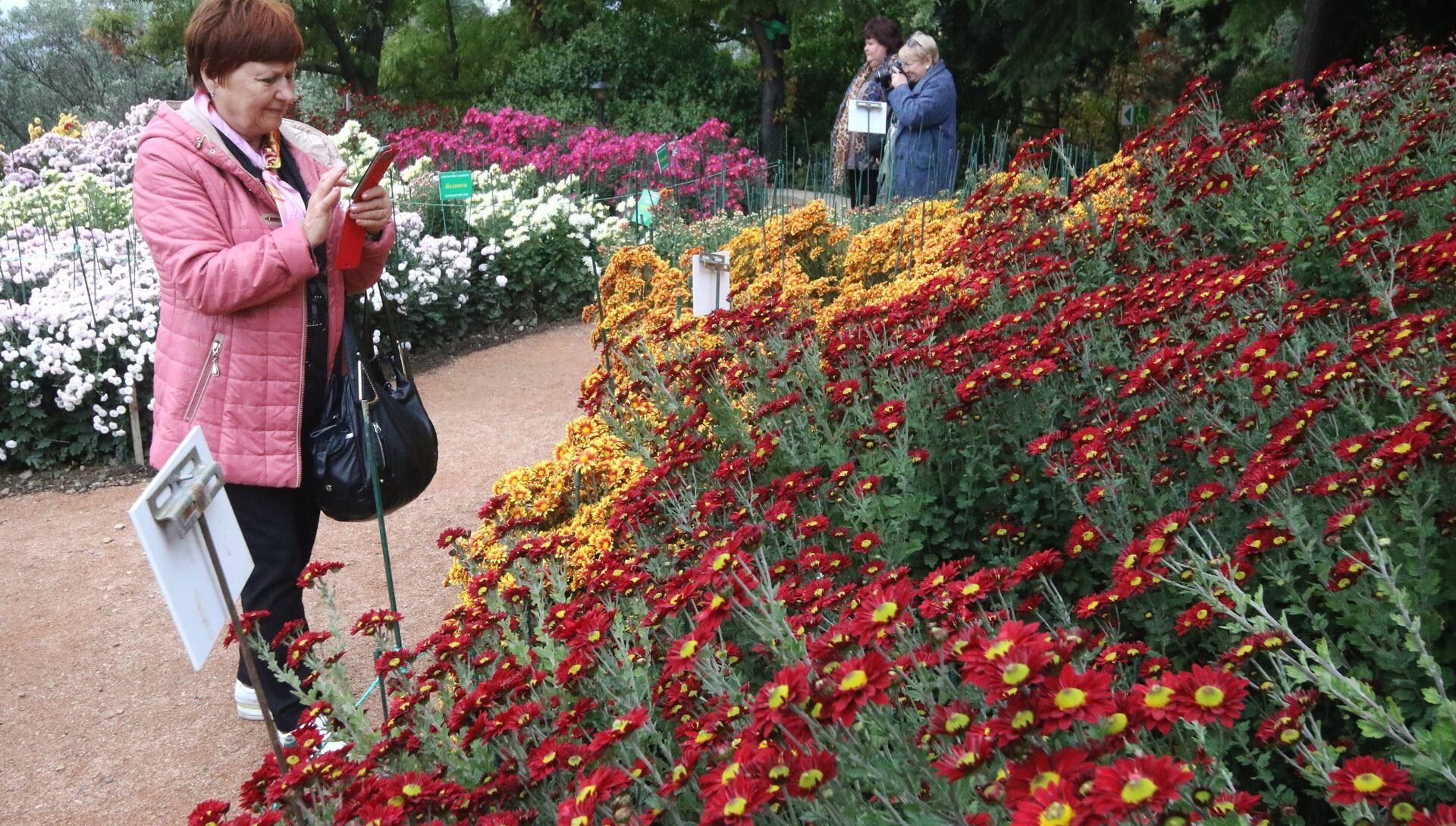 Бал хризантем в Никитском ботаническом саду - РИА Новости, 1920, 17.10.2020