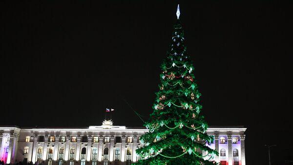 В Симферополе зажгли главную городскую елку