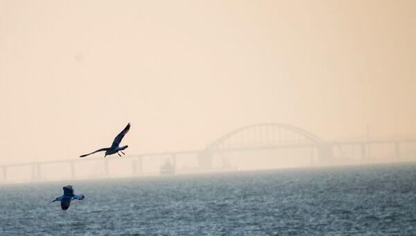 Вид на Крымский мост через Керченский пролив
