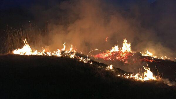 Ликвидация лесного пожара. Архивное фото