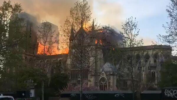 Сердце Парижа в огне: с собора Парижской Богоматери обрушился шпиль