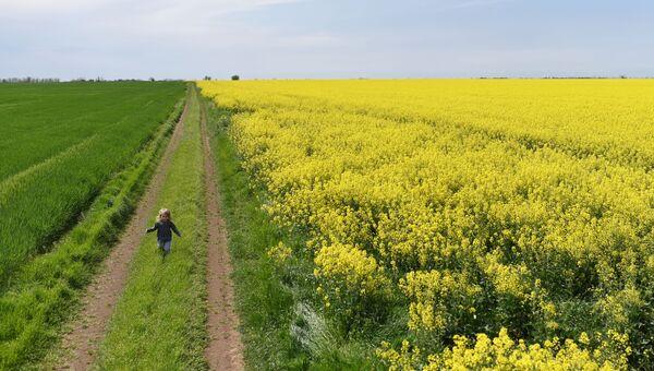 Девочка бежит по дороге через цветущее поле в Крыму