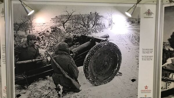 Выставка, посвященная 75-й годовщине освобождения Крым от немецко-фашистских захватчиков, в аэропорту Шереметьево
