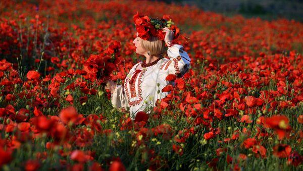 Поля цветущих маков в Крыму