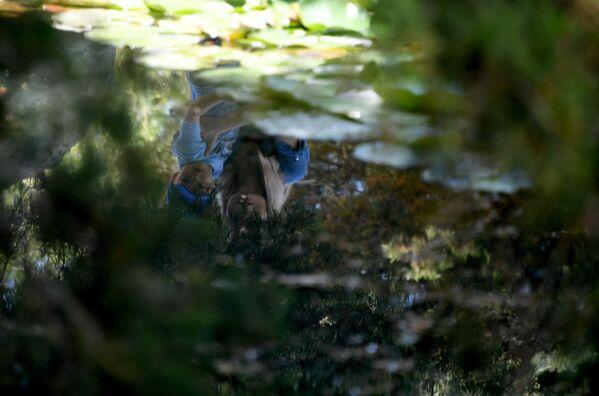 Отражение женщины и ребенка в озере в Ботаническом саду в Симферополе