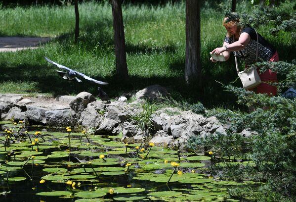 Женщина фотографирует озеро в Ботаническом саду в Симферополе