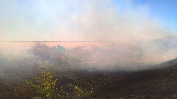 На востоке Крыма огонь съел гектар пшеничного поля