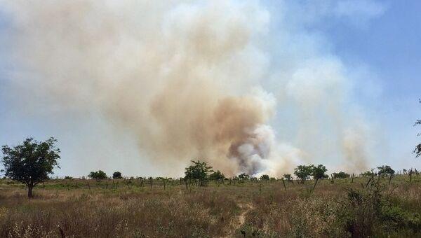 Пожар на заброшенных виноградниках под Севастополем