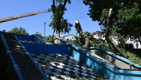 Вырубка деревьев вдоль набережной реки Салгир