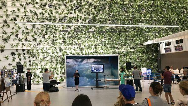В аэропорту Симферополя картины Айвазовского воссоздали с помощью песка