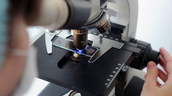 Ученый за микроскопом. Архивное фото.