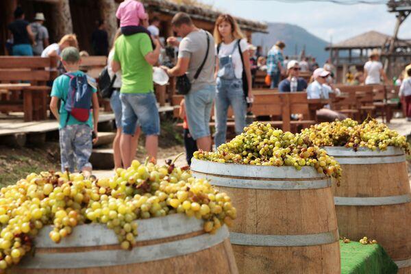 Посетители на дегустации во время Праздника Винограда в селе Перевальное Симферопольского района