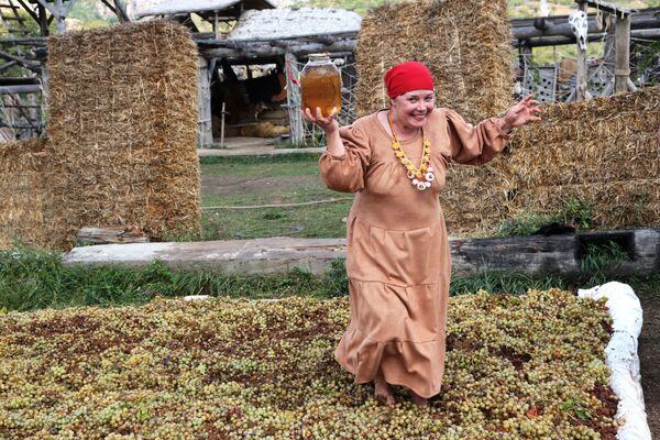 Женщина давит виноград на Празднике Винограда в селе Перевальное Симферопольского района