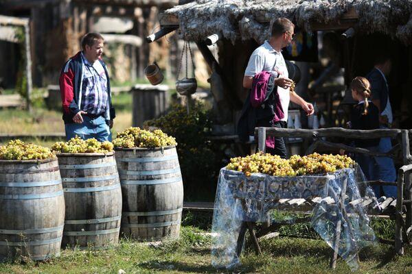 Виноградная фотозона на Празднике Винограда в селе Перевальное Симферопольского района
