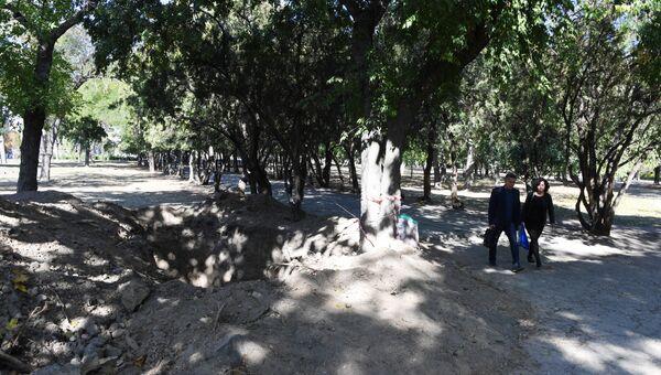 В парке в центре Симферополя обнаружили человеческие останки