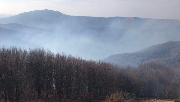 Лесной пожар в Симферопольском районе Крыма, 15 ноября 2019 года