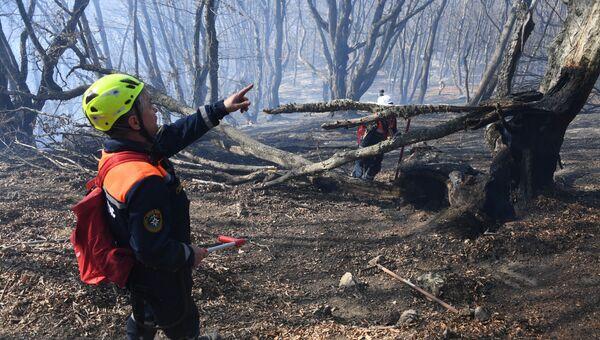 Тушение лесного пожара в урочище Курлюк-Баш в Симферопольском районе