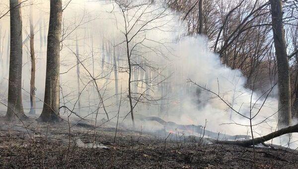 Пожар в урочище Даир-Алан в Крыму