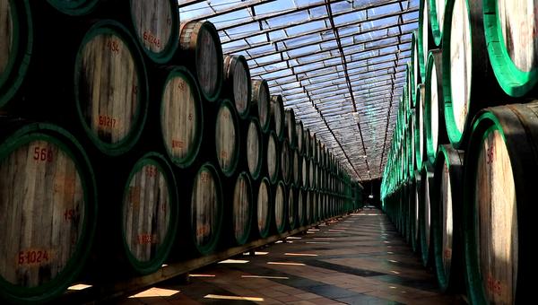 Солярий для вин завода марочных вин Коктебель