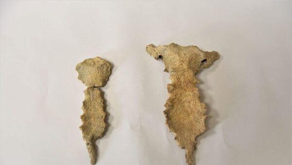 В Херсонесе нашли останки древних людей с признаками болезни